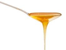 Le miel clair coule vers le bas de la fin de cuillère en métal  Photographie stock libre de droits
