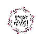 Le miele de Grazie vous remercient infiniment en italien Affiche inspirée ou bannière de lettrage Lettrage de main de vecteur Images libres de droits