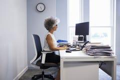 Le milieu a vieilli la femme d'affaires à l'aide de l'ordinateur portable dans son bureau image libre de droits