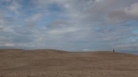 Le mille de Rabjerg est une dune côtière de migration entre Skagen et Frederikshavn, Danemark banque de vidéos