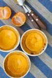 Le mini fromage durcit avec des mandarines Photos stock