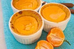 Le mini fromage fait maison durcit avec des mandarines Photographie stock