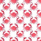 Le modèle délicieux savoureux de belle belle mer lumineuse colorée d'été du rouge marche en crabe l'illustration de main d'aquare Photographie stock libre de droits
