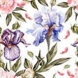 Le modèle d'aquarelle avec des fleurs irisent, des pivoines et Image stock