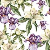 Le modèle d'aquarelle avec des fleurs irisent, des pivoines et Photo libre de droits