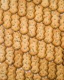 Le modèle de biscuit Image stock