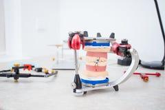 Le modèle de la mâchoire dans l'articulateur pour l'étude de la morsure et du joint enlevés dans le bureau du docteur photographie stock