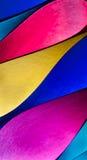 Modèle de papier coloré dans des formes elliptiques uniques Photo stock