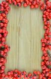 Le modèle de texture de fond de la sorbe rouge porte des fruits cadre (le Sorbus) Images libres de droits
