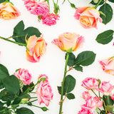 Le modèle floral avec les roses, les bourgeons et le vert colorés part sur le fond blanc Configuration plate, vue supérieure Fond Images libres de droits