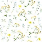 Le modèle floral coloré avec le myosotis, le tansy et la renoncule fleurit illustration de vecteur