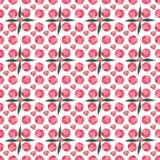 Le modèle floral graphique de ressort de belle offre lumineuse de résumé de l'les pivoines roses avec le vert part du modèle Image stock