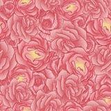 Le modèle floral sans couture fleurit des roses Photos stock
