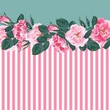 Le modèle rayé horizontal avec, a monté, pivoine, feuilles et bourgeon Cadre floral de conception de vecteur de mariage mignon illustration stock