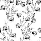 Le modèle sans couture avec la main dessinant les tulipes noires et blanches fleurit Photographie stock