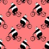 Le modèle sans couture avec le panda concernent la bicyclette Photographie stock