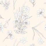 Le modèle sans couture avec le pavot fleurit, des jonquilles, anémones, violettes illustration libre de droits