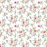 Le modèle sans couture avec le lisianthus rose et blanc fleurit Illustration de vecteur Photo libre de droits