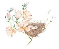 Le modèle sans couture de l'oiseau d'aquarelle niche sur les branches d'arbre, tirées par la main sur un fond blanc Photos stock