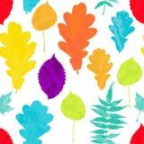Le modèle sans couture floral avec l'arbre jaune d'automne, rouge, orange, vert, bleu, violet grunge part sur le fond blanc Image stock