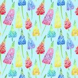 Le modèle sans couture floral de l'les lupines colorés fleurit Images stock