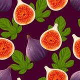Le modèle sans couture fruité avec des figues portent des fruits et des feuilles Photos libres de droits