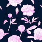 Le modèle sans couture, pivoine rose fleurit l'illustration de vecteur illustration stock