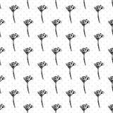 Le modèle sans couture simple avec les fleurs botaniques réalistes de ginseng de croquis d'encre solated sur la collection blanch illustration libre de droits