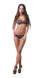 Le modèle sexy fait de la publicité la lingerie brune de point de polka Photo stock