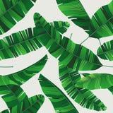 Le modèle tropical sans couture d'été coloré avec la banane part illustration de vecteur