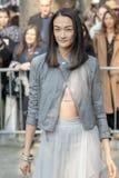 Le modèle utilise une jupe grise de Tulle et une veste en cuir grise photo stock