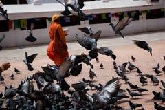 Le moine avec des pigeons s'approchent du stupa Boudhanath Image stock