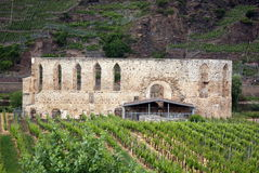 Le monastère ruine Stuben Image libre de droits