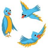 Illustrations bleues de vecteur d'oiseaux réglées Photo libre de droits