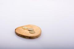 Le monete su un ceppo di legno hanno tagliato nei pezzi sottili rotondi su fondo bianco Fotografia Stock Libera da Diritti