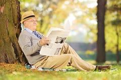 Le monsieur supérieur de sourire a posé lire un journal en parc à Photo stock