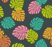 Le monstera coloré tropical laisse le modèle sans couture illustration de vecteur