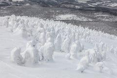 Le monstre de neige ou la neige a givré des arbres au bâti Hakkoda Photo libre de droits