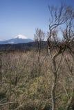 Le mont Fuji images stock