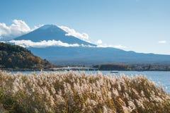 Le mont Fuji au lac Kawaguchi, Japon image libre de droits
