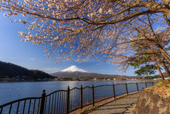 Le mont Fuji au printemps Photographie stock