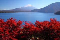 Le mont Fuji et lac Motosu photo stock