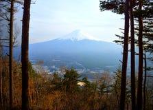 Le mont Fuji par des arbres Images libres de droits