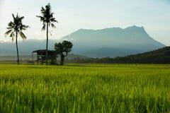 Le mont Kinabalu, Sabah photographie stock