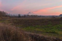 Le mont Rainier au crépuscule Photo libre de droits