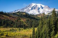 Le mont Rainier en automne Photos libres de droits