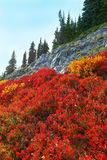 Le mont Rainier, Washington Photographie stock