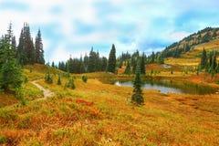 Le mont Rainier, Washington Photos libres de droits
