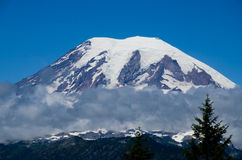 Le mont Rainier, Washington State, Etats-Unis Image stock