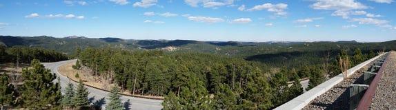 Le mont Rushmore Photo stock
